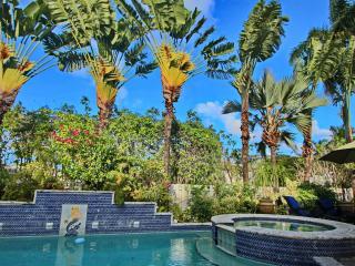 AMAZING POOL VILLA 3 MINUTES FROM BEACH, Miami Beach