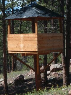 Tree house - for kids of all ages to enjoy