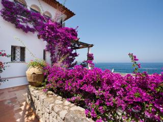 Charming Apartment near Sorrento - Alice, Massa Lubrense