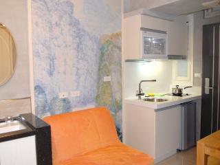內湖路一段387巷1房1廳1廚房B房 Neihu MRT Type B Apt