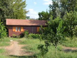 Holiday house Dilek, near the beach, Cirali