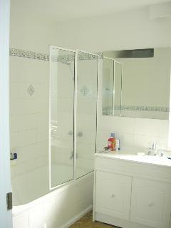combined shower & bath