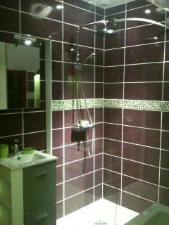 Salle de bain à deux vasques avec douche italienne et wc