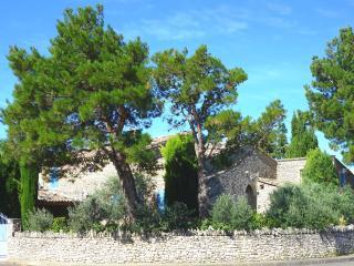 VILLA DE CARACTÈRE *LA MASSETTE DU CHEVAL BLANC*, L'Isle-sur-la-Sorgue