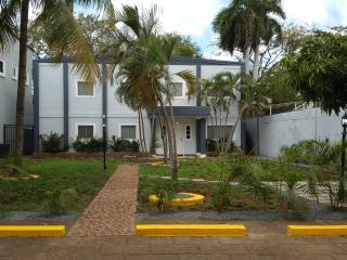 3 BR A/C. Furnished Apartment. Vacation & Business, Manágua