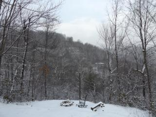 Snow! Skiing! Tubing! Perfect location! 3/3 Log Cabin gas F/p  Easy roads Views!