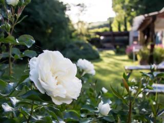 B&B I fiori della cava