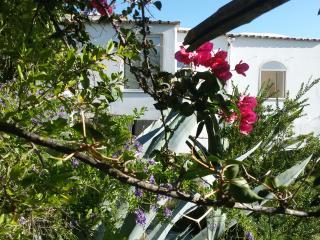 Villa Zezelio con giardino e terrazzi vista Capri, Praiano