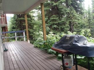 Two Bedroom Condo W Private Laundry, Bbq & Hot Tub, Silver Star