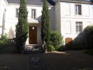 Appartement au pied du château, face à la Loire, Amboise
