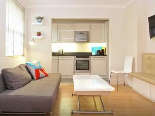 Stylish 1brm in Notting Hill/Kensington, Londen