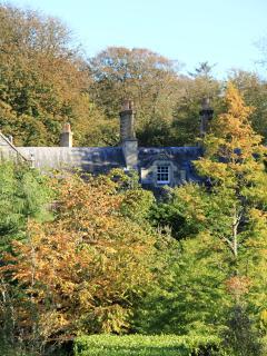 Autumn colours on the Estate.