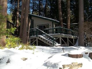 Secluded Cozy Cottage Surrounded By Pine Trees, Idyllwild