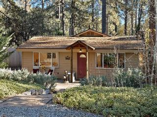 Mountain Retreat, Close To Town, Idyllwild