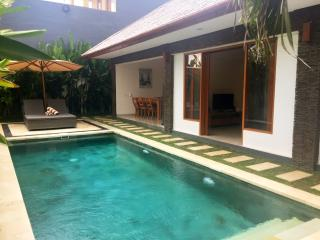 Lotus 2 Bed room Two Lizards Villa, Sanur