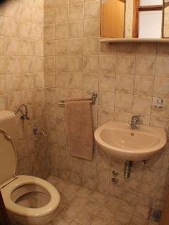 A1(2+1): bathroom with toilet