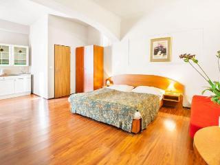 Cozy Studio apartment in Zizkov {#has_luxurious_a…