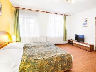 Rohacova Studio apartment in Zizkov {#has_luxurio…