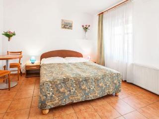 Rohacova apartment in Zizkov {#has_luxurious_amen…