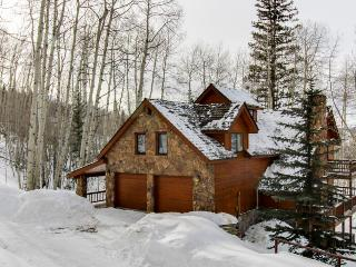 Luxurious home on large private lot w/ gourmet kitchen & private hot tub, Telluride