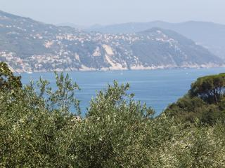 Must Be Dreaming - On The Path to Portofino, Santa Margherita Ligure