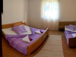 Apartmani Sandro A3+1, Ivan Dolac