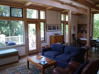 Open Floor Plan with Forest & Water Views - Modern & Rustic, Point Reyes Station