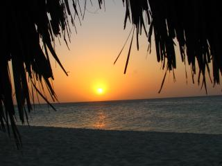 Stunning Eagle Beach View Condo, Palm Beach/Eagle Beach