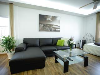 Modern Living Room. It has a flat screen TV with cable channels