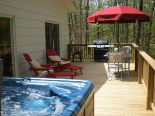 Pinecone Cottage  Hot Tub Mtn View on 145 acres