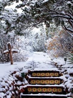 Pathway from garden