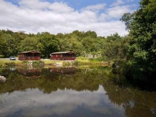 Luxury 4*Lodge near Oban- Willow, Benderloch