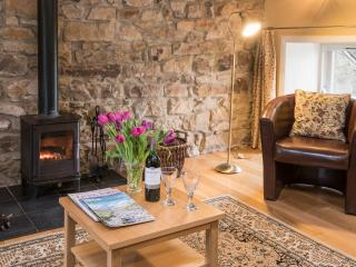 cosy log burning stove for winter months