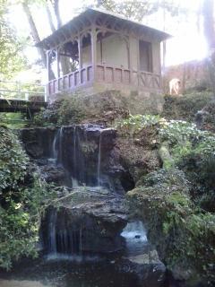 La Cascade pour se ressourcer... Plein de vie dans cet endroit.