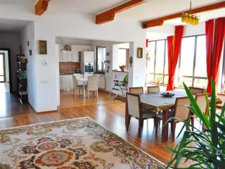 Spacious Cozy Villa, 15 minutes drive to Brasov