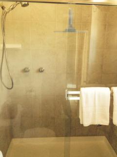 Walk in shower with seat and never ending hot water.