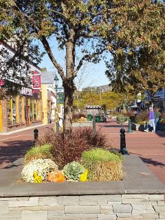 The Washington Street Mall, full of quaint shops and delicious restaurants is only a block away.