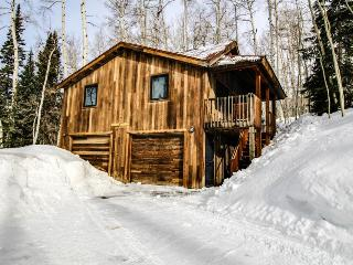 Cozy, rustic, and airy cabin, just three miles from Telluride Ski Resort!