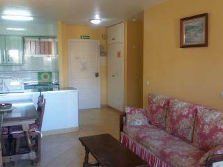Minerva one bedroom apartment, Benalmadena