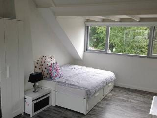 triple bed room 11 minutes from Amsterdam central, Diemen