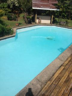 Large, Private Guesthouse with Pool