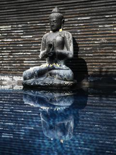 Budha by the pool