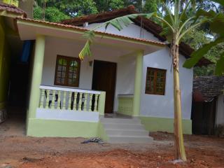 Nina's Mansion