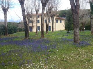 Villa con splendido parco, Forte Dei Marmi