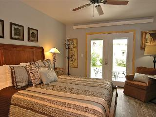 Viking Lodge 119 - Lovely Ground Floor Condo, Recently Remodeled, Sunny Patio, Telluride
