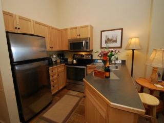 Buffalo Lodge 8418 - New appliances, new carpet, courtyard and ski area views!, Keystone