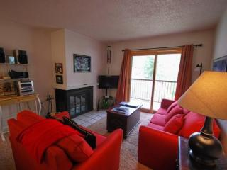 Snowdance Condominiums A202 - Walk to slopes, updates, Mountain House!, Keystone