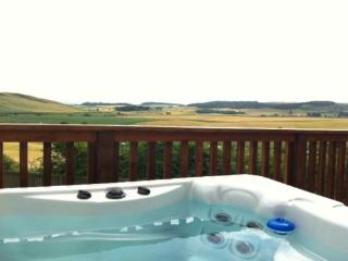 Beautiful lodges with hot tubs - 95800, Cupar