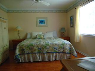3/2 GREAT AMENITIES, WALK TO THE PIER, Isla de Saint Simons