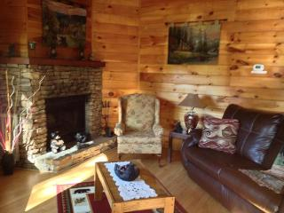 Winter Special**Emerald Forest Very Close to Downtown Gatlinburg